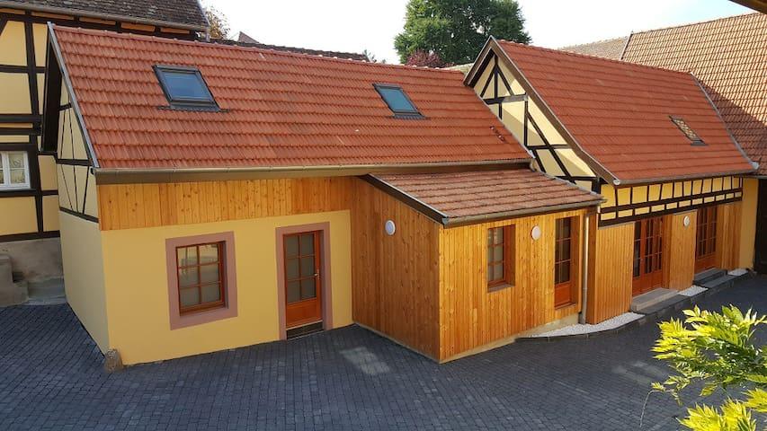 Gite Entre-Deux-Vignes / spa sauna hammam 6 pers. - Scharrachbergheim-Irmstett - Rumah