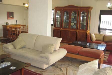 luxury apartment for rent ,Bir Hassan
