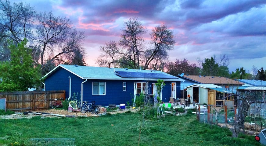 Colorful 3br/2ba, Garden, Old Town, City Park Pool - Fort Collins - Ev