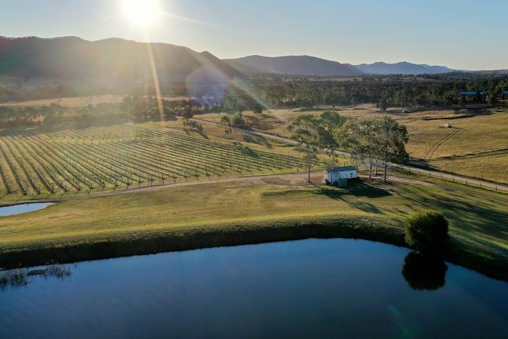 Winmark Wines | Villa Vino