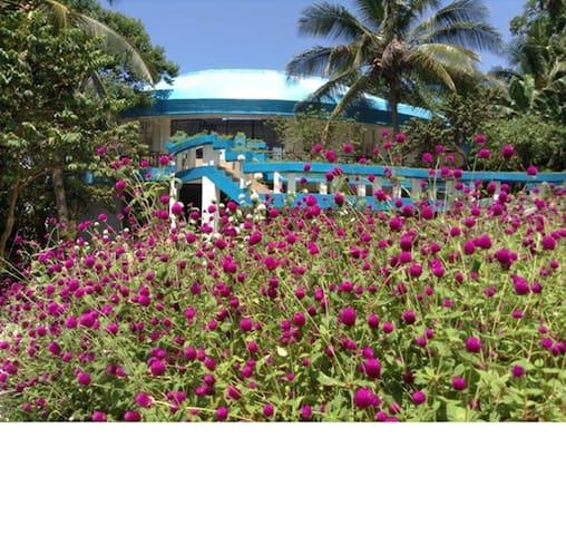 Enjoy a large tropical garden!