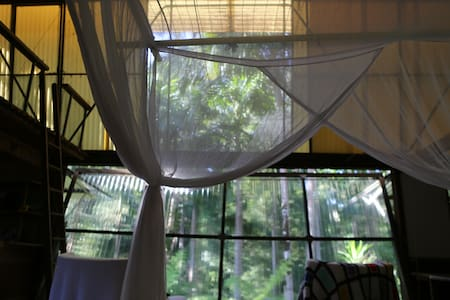 River Room, Bellingen Treehouse - Gleniffer - Treehouse