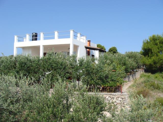 GUEST HOUSE PURE NATURE-Nečujam - Nečujam - บ้าน