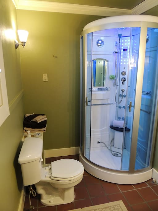 SteamShower with acupressure jets, rain shower, Sauna, Pedi-massage, shaving mirror