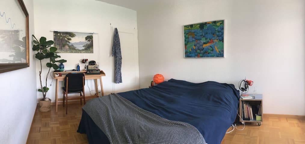 Appartement design et arty avec plantes et chat