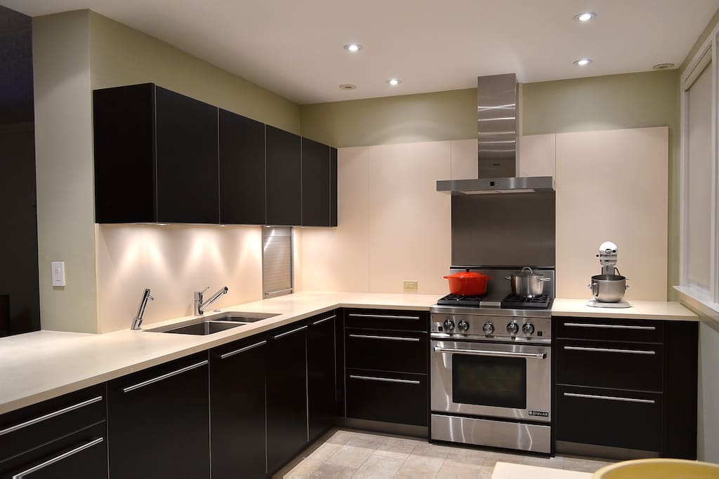 professional kitchen with european cabinets