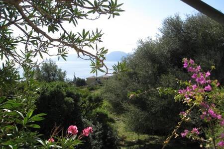 Nuova casa giardino, AC  e WIFI 244 - Cala Gonone