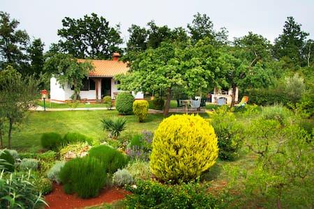 Villa Sergo - Nova Vas - Casa