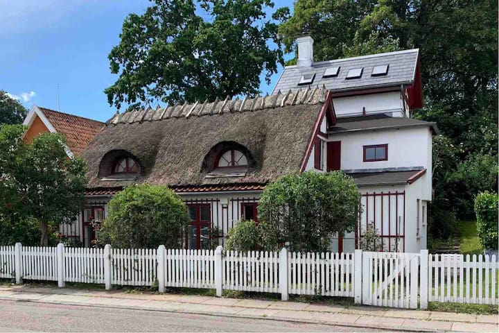 Spacious house 20 min from downtown Copenhagen.