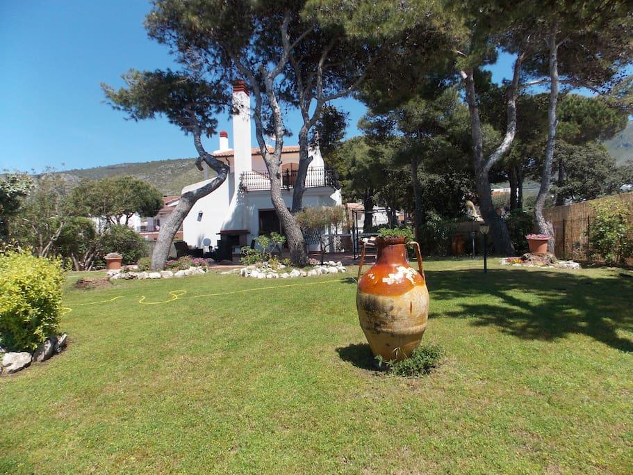 Particolare del giardino di piante mediterranee.
