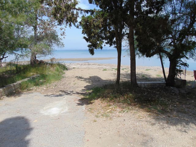 The road to the beach,  the beach is 150 meters from our studios