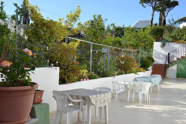 Miniappartamento vicino al Mare - ฟอริโอ - อพาร์ทเมนท์