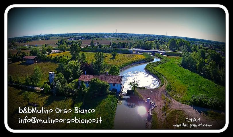 B&B Mulino All'Orso Bianco - Martellago - Wikt i opierunek