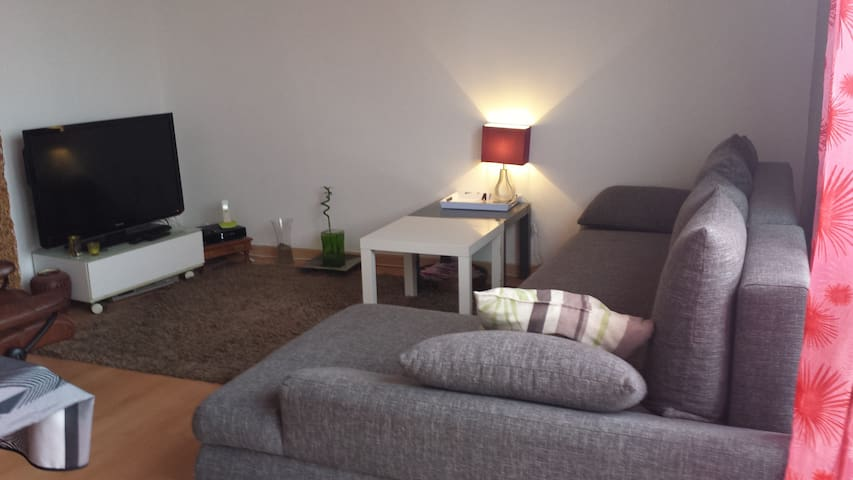 appartement entier capacité 4/6 pers - Nantes - Huoneisto
