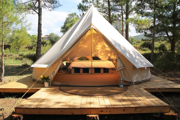 Luxury Tents - Forest Days Glamping - Naves - Tält