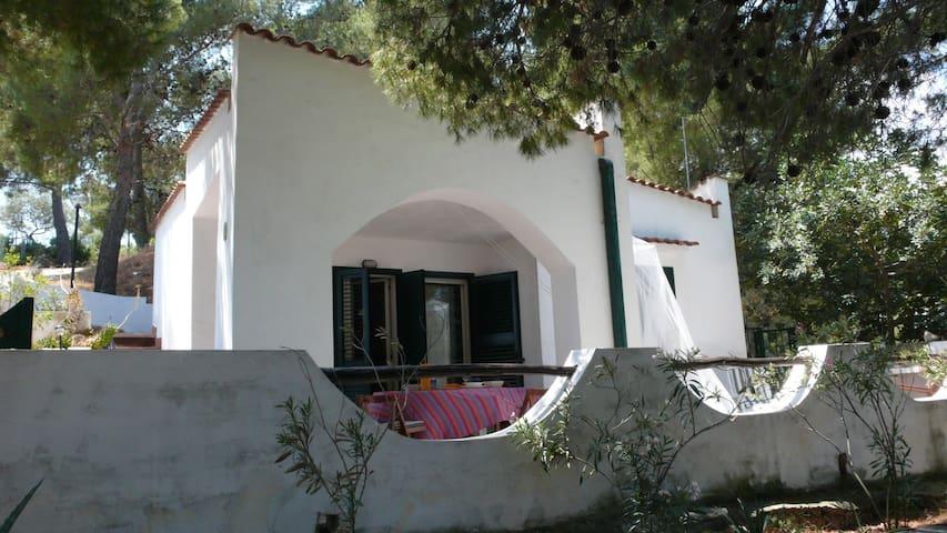 Casa Dada gargano a 7 km da Vieste - Foggia - Villa