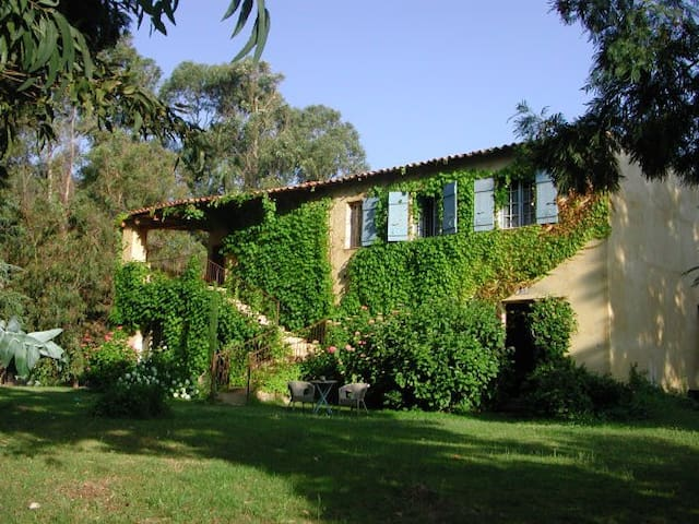 Au sud de Calvi, le Gite de Verdure - Calenzana - House