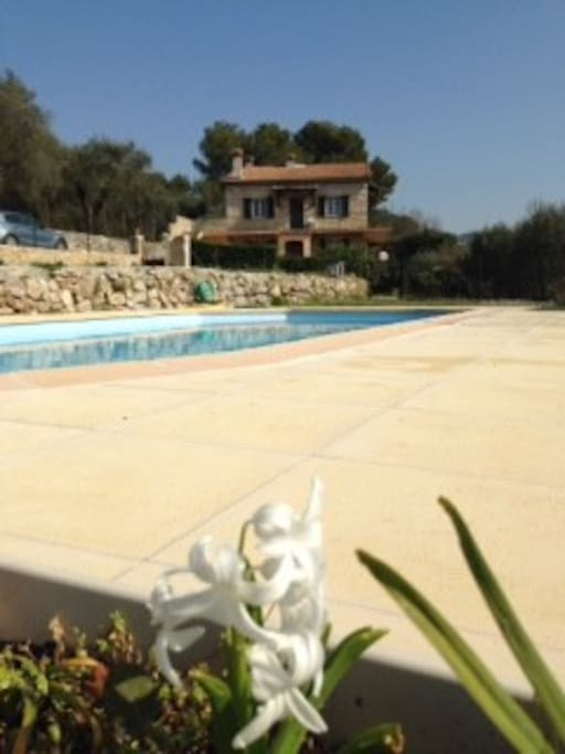 Pool 9 meters x 4 meters