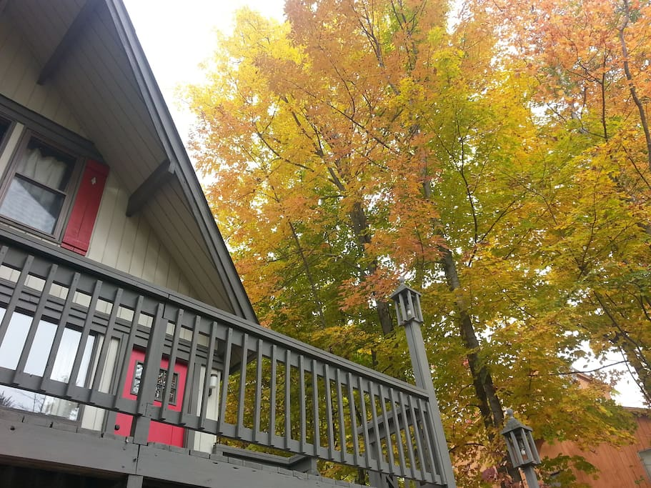 Beautiful Fall & Thanksgiving Getaway - Also available for New Year's
