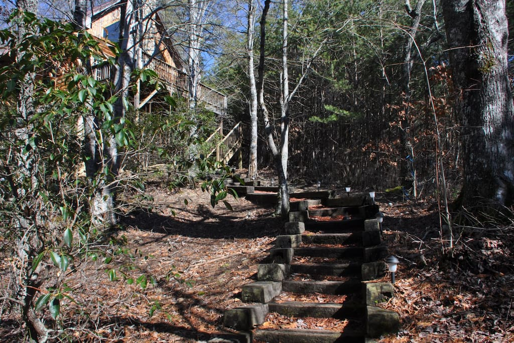 Pathway to the Cabin