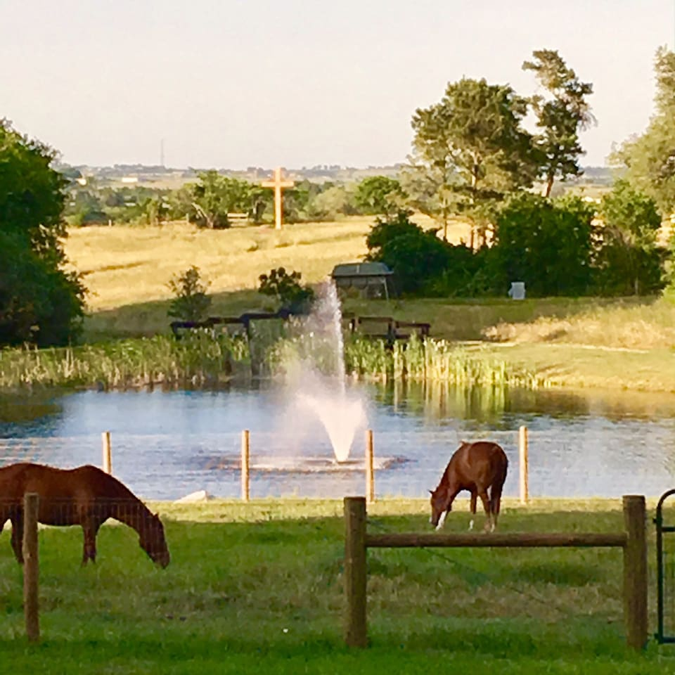 Beautiful scenery!  Views of pastures ponds and pretty horses