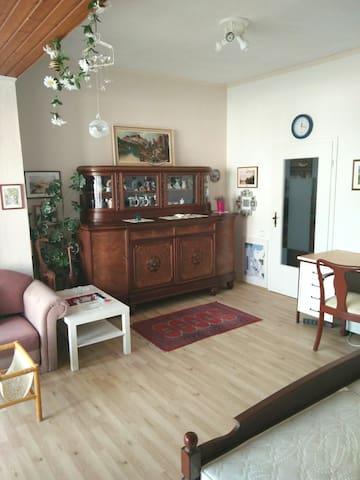 夏天凉爽的宽敞房间(1)