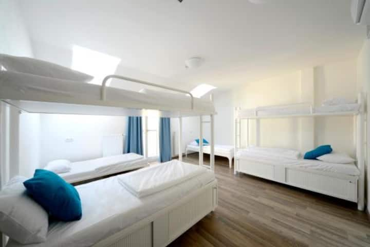Bed in 6-Bed Mixed Dorm with Ensuite Bathroom