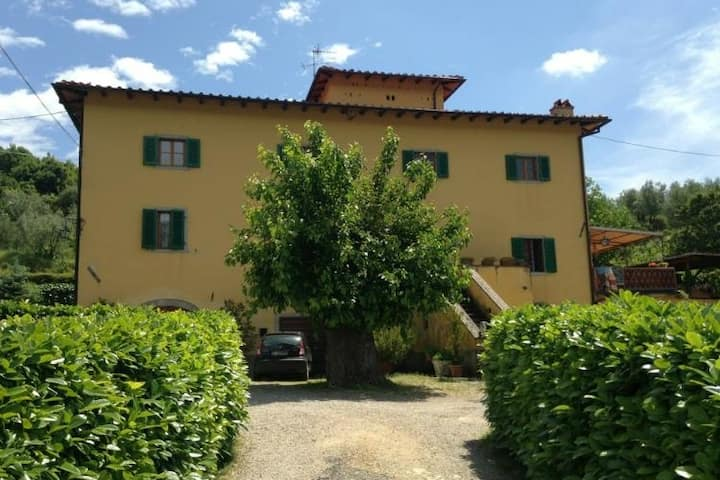 Granparent's House- Tuscany countryside