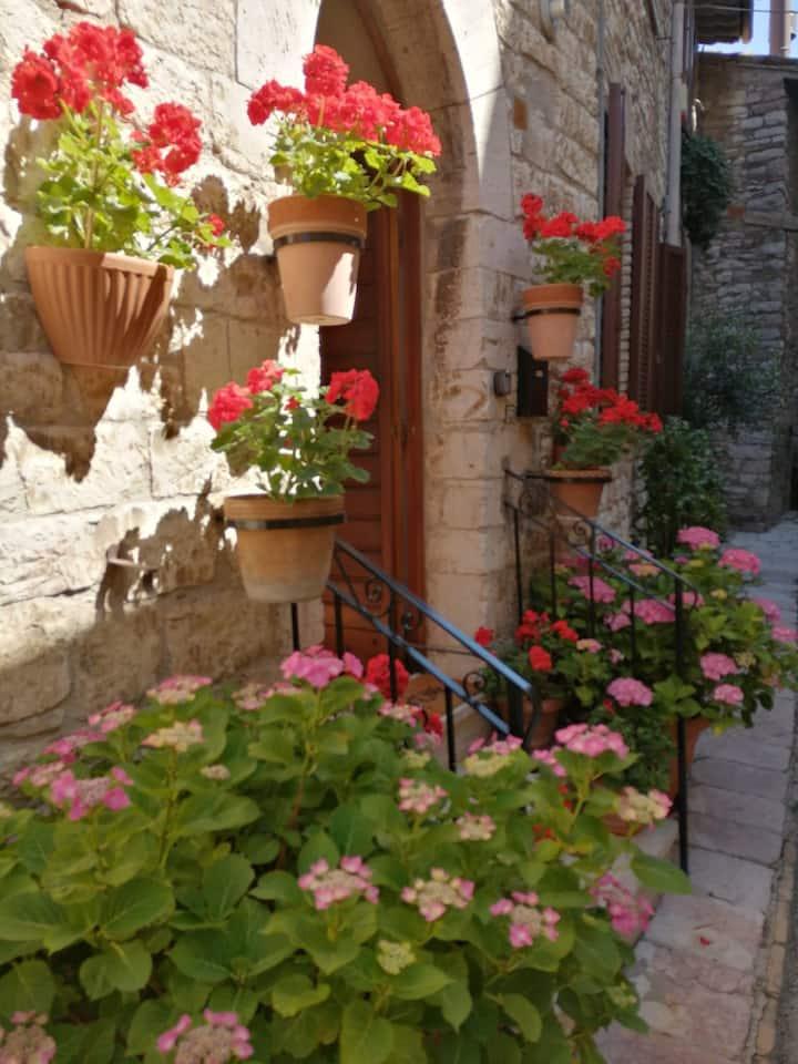 Appartamento 80 mq_Assisi centro storico