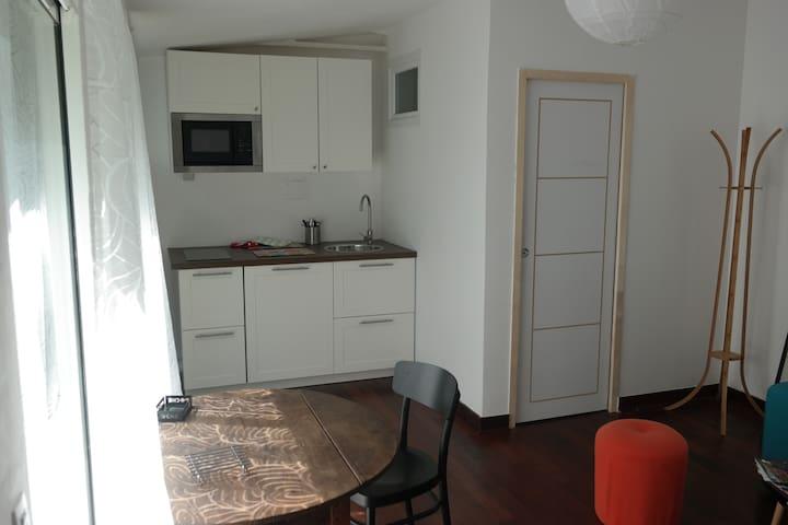 Grand studio centre sur jardin - Nantes - Apartemen