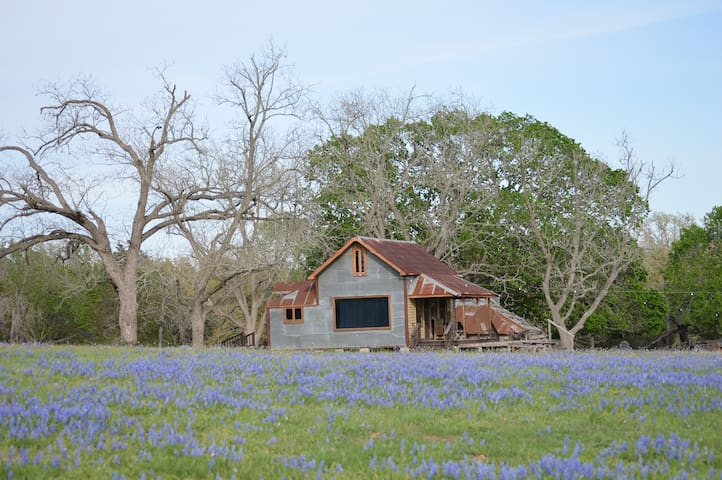 Cleghorn Ranch - Paige - Blockhütte