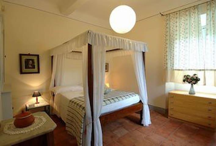 Alle Camelie Compitese Lucca Pisa - Pieve di Compito - Apartment