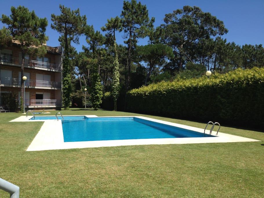 appartement de plage avec piscine appartements en r sidence louer f o braga portugal. Black Bedroom Furniture Sets. Home Design Ideas