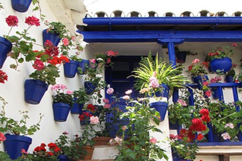 Duplex en el barrio de s lorenzo casas en alquiler en - Inmobiliarias en cordoba espana ...
