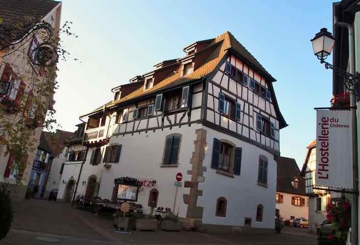 Ravissant appart 82m2 à Eguisheim - Eguisheim - Apartment
