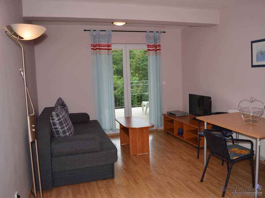 Living (sofabed for extra 2 persons) and dining area with a kitchenette