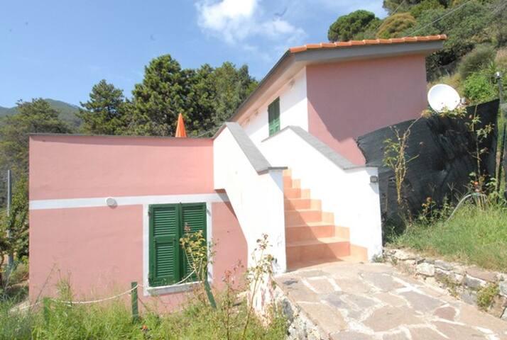 monterosso al mare (5 terre)