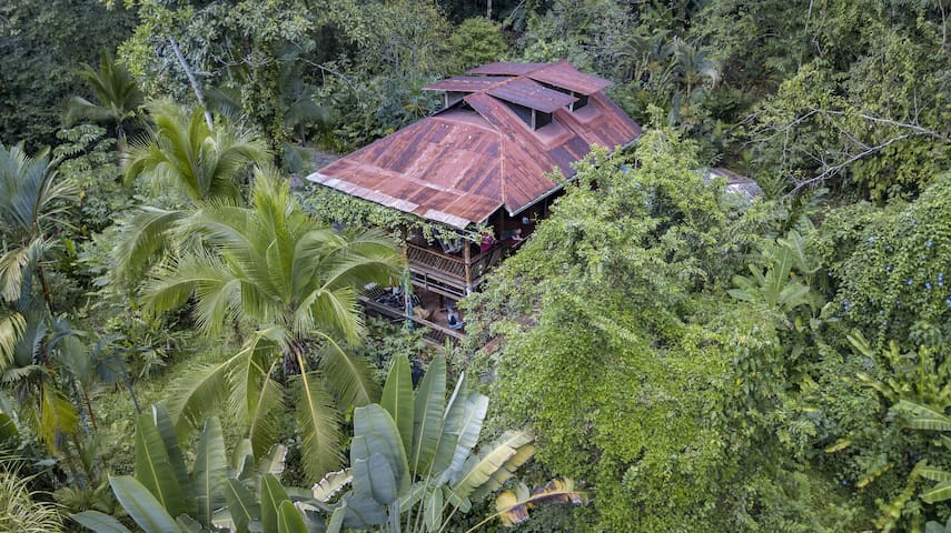 CAPUCHIN MONKEY FOUNDATION. Jungle Loft