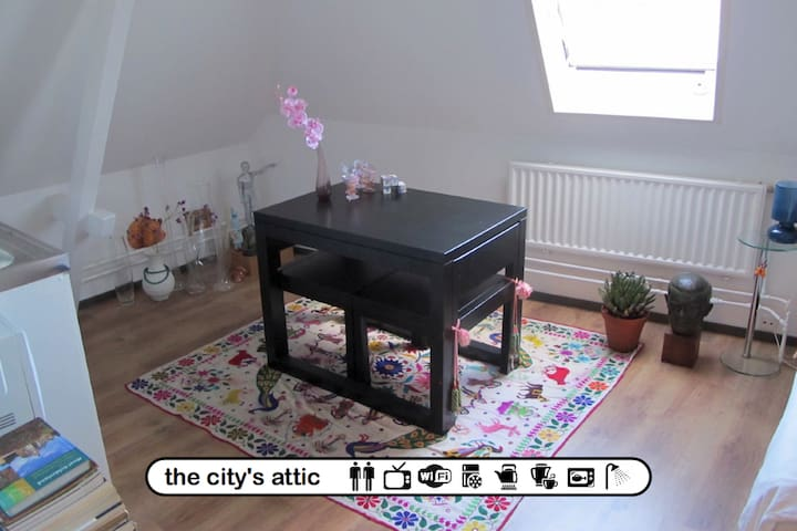the city's attic - Arnhem - Huoneisto