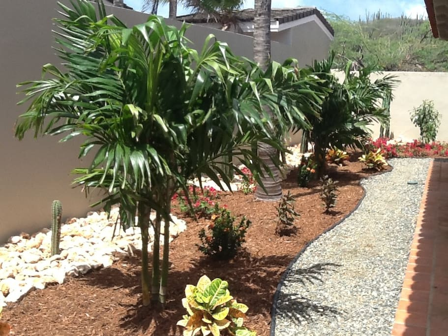 Professional landscaping by Fantastic Gardens