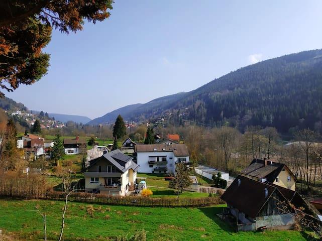 Schwarzwalds Beauty 2