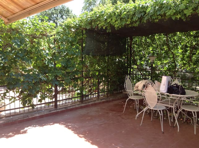 Nice apartment with large terrace - Montalto Marina - Apartment