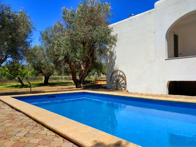 Cozy villa with pool among olive trees