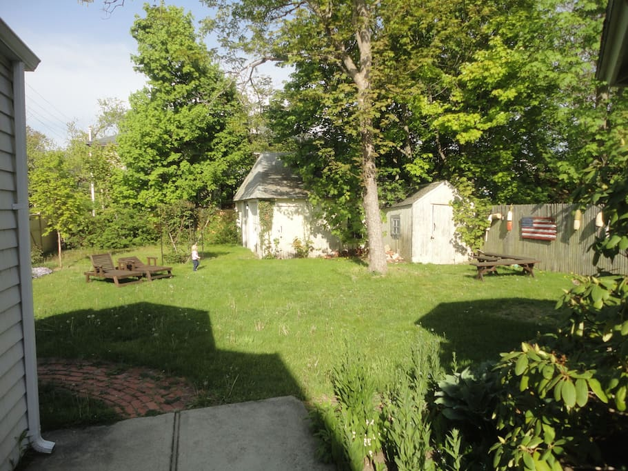 Big backyard with mature trees, beautiful plants, and plenty of space.