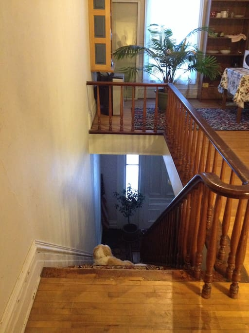 The front stairway leading to the room.