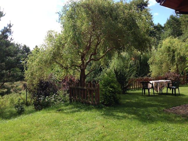 taras na trawie za domem