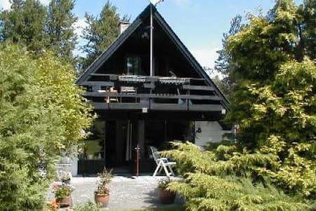Skønt utraditionelt sommerhus - Cabin