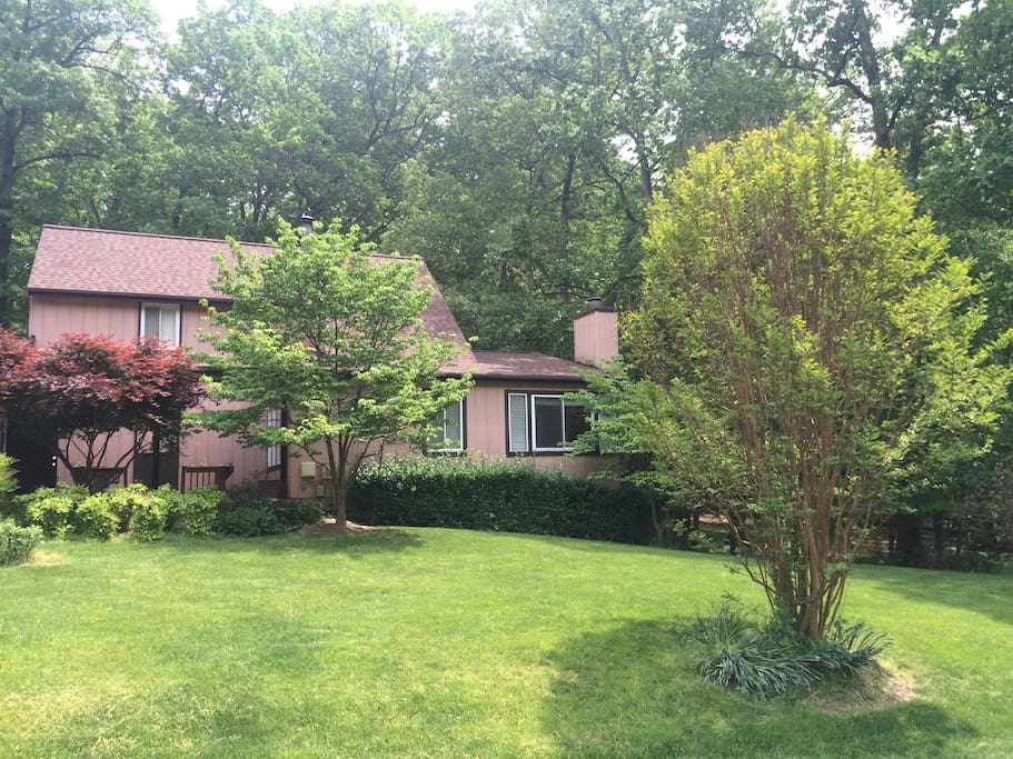 On The Edge Of The Forest Houses For Rent In Silver Spring Maryland Unite