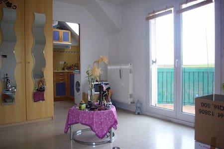 Studio proche  A1 et Roissy CDG - Survilliers - อพาร์ทเมนท์