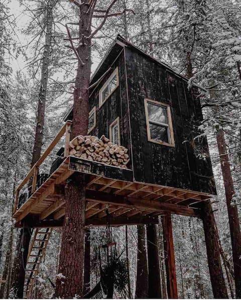 Casa en el árbol de Muskoka